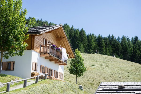 Photo exteriors in summer Taser Alm
