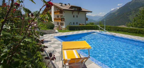 Sommer Präsentationsbild Garni-Hotel Alpenhof