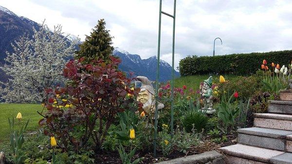 Foto vom Garten Schenna