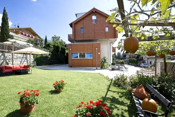 Photo of the garden Scena / Schenna