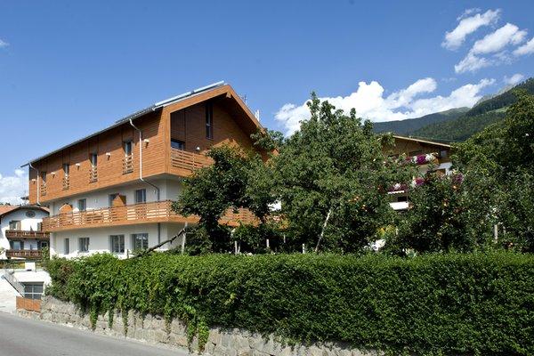Photo exteriors in summer Mittendorf