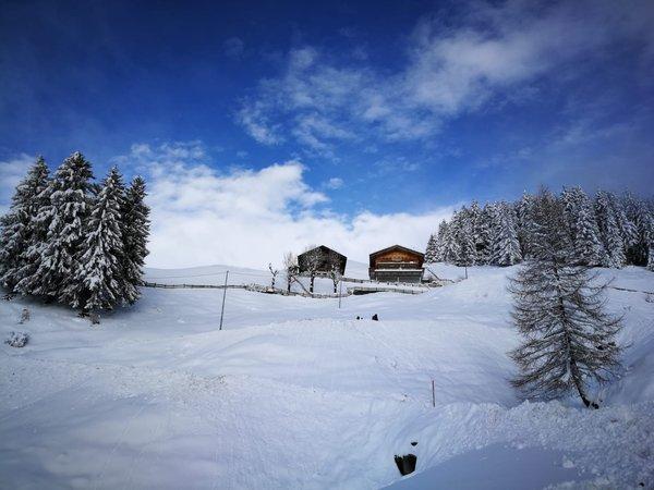 Winter Präsentationsbild Ferienwohnungen auf dem Bauernhof Wiesbauer