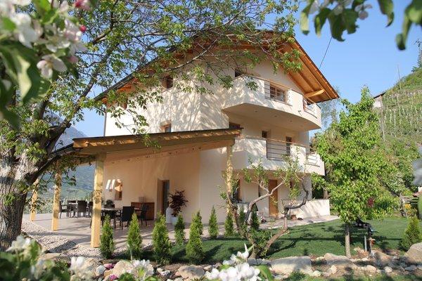 Foto estiva di presentazione El Paradiso - Appartamenti in agriturismo 3 fiori