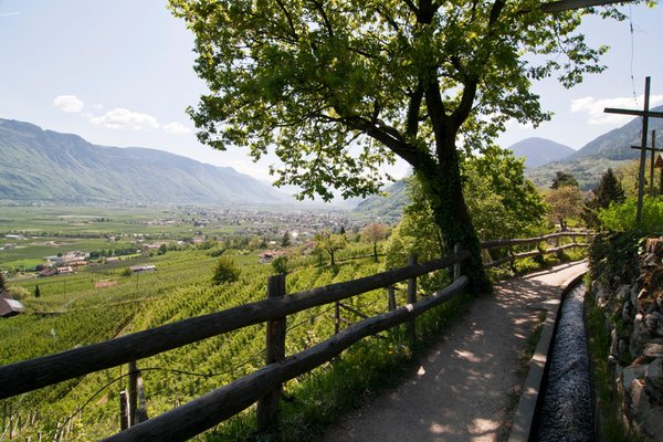 Photo gallery Merano / Meran and surroundings summer