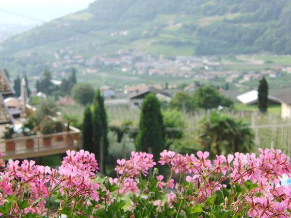 Foto del giardino Lagundo