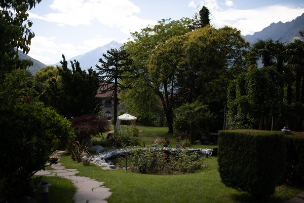 Photo of the garden Merano / Meran