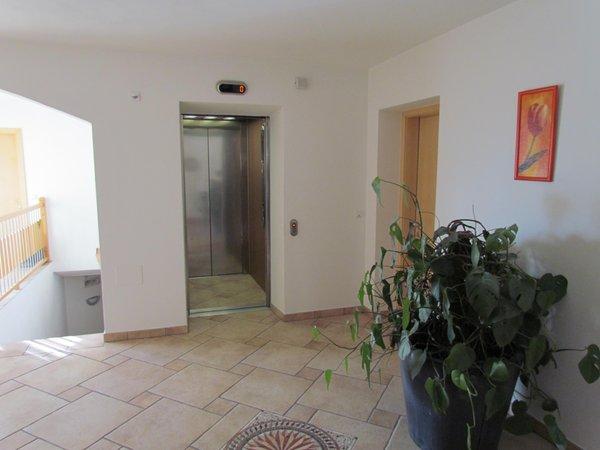 Trübenbach - B&B + Appartamenti 2 stelle Andriano (Strada del Vino Nord)