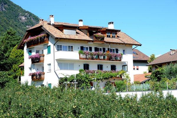 Foto estiva di presentazione Rosengartenhof - Appartamenti in agriturismo 4 fiori