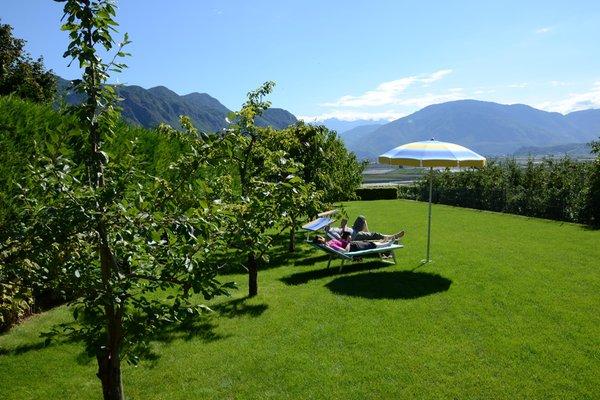 Foto del giardino Andriano (Strada del Vino Nord)