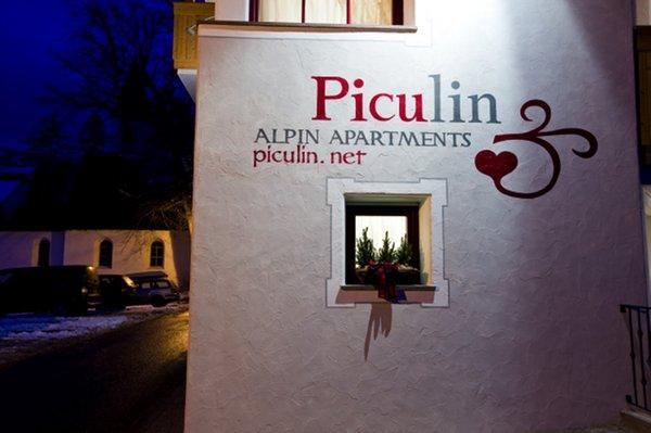 Foto esterno Alpin Apartments Piculin