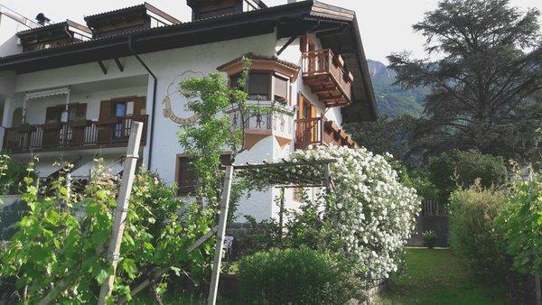 Foto estiva di presentazione Appartamenti in agriturismo Haus Barbieri