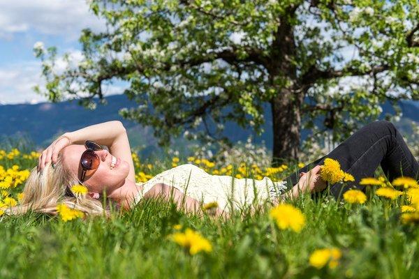 Sommeraktivitäten Bozen und Umgebung