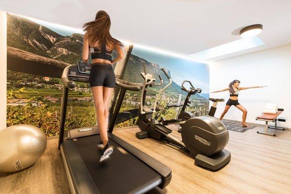 Foto vom Fitness-Bereich Hotel Christof