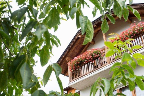 Foto esterno in estate Meral in Körbelhof