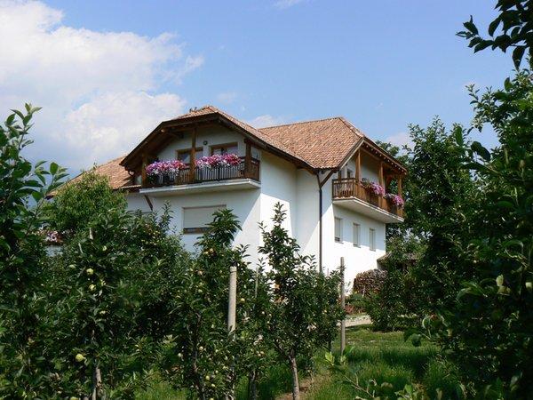 Foto estiva di presentazione Appartamenti in agriturismo Meral in Körbelhof