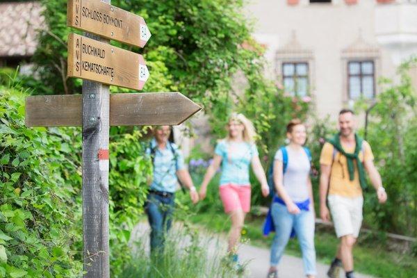 Bildergalerie Eppan an der Weinstrasse Sommer