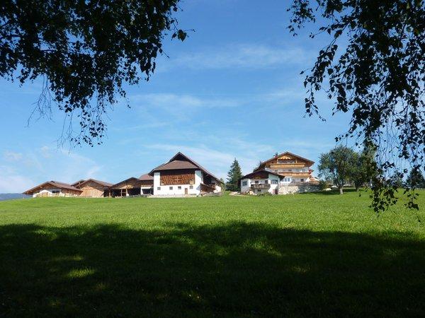 Lage Gasthof St. Ulrich Schlaneid (Mölten)
