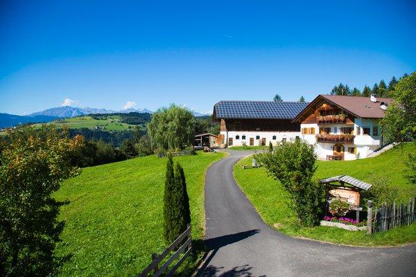 Sommer Präsentationsbild Ferienwohnungen auf dem Bauernhof Gastreinhof