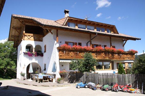 Foto Außenansicht im Sommer Neu-Schötzerhof