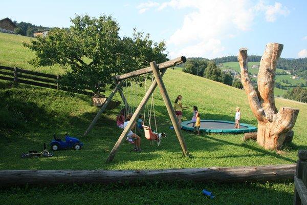 Foto vom Garten Mölten
