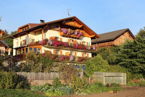 Sommer Präsentationsbild Ferienwohnungen auf dem Bauernhof Kastnerhof