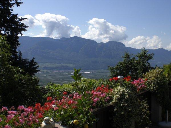 Panorama Termeno (Strada del Vino Sud)
