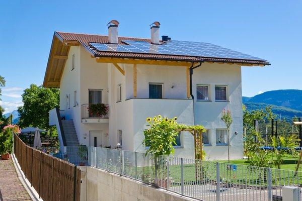 Foto esterno in estate Sonnhof