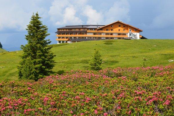 Foto estiva di presentazione Hotel Corno Nero