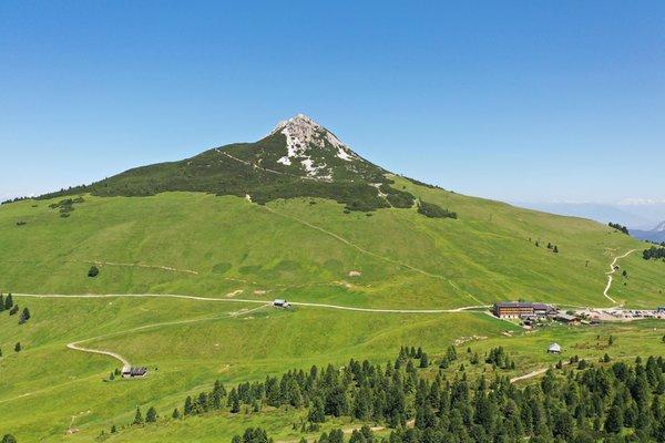 Photo exteriors in summer Alpine Wellness Berghotel Jochgrimm