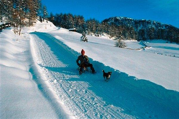 Attività invernali Bolzano e dintorni