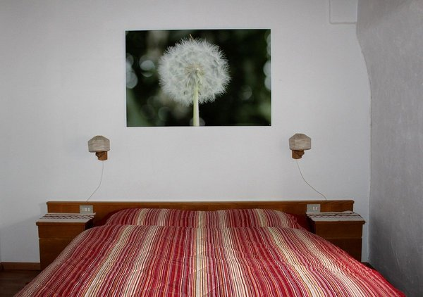 Photo of the room Farmhouse apartments Moserhof