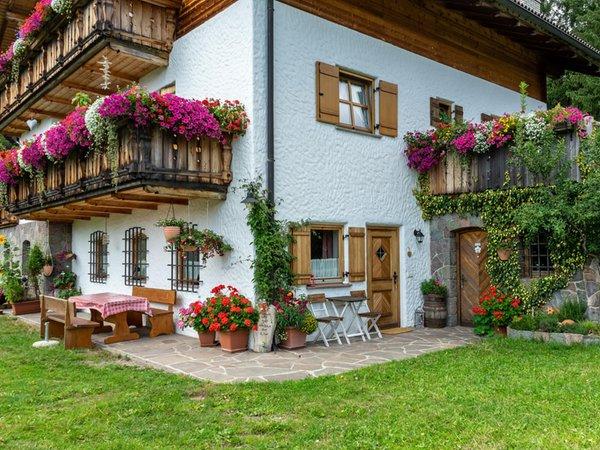 Foto vom Garten Sarntal