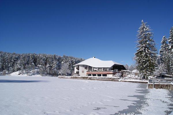 Winter Präsentationsbild Am Wolfsgrubenersee - Hotel 3 Stern sup.