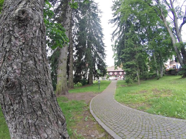 Foto del giardino Soprabolzano (Renon)