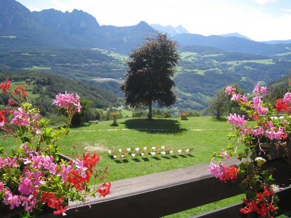 Foto del balcone Naturhotel Wieserhof
