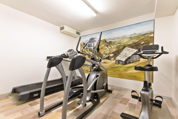 Photo of the fitness area Small hotel Camoscio