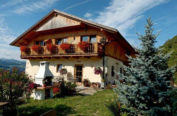 Appartamenti in agriturismo zunerhof longostagno for Agriturismo bressanone e dintorni
