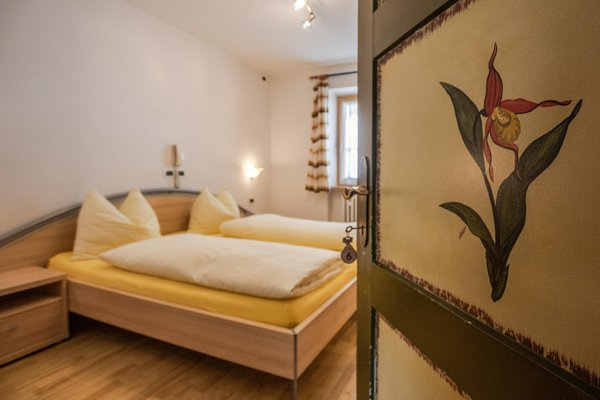Photo of the room Garni (B&B) Baita