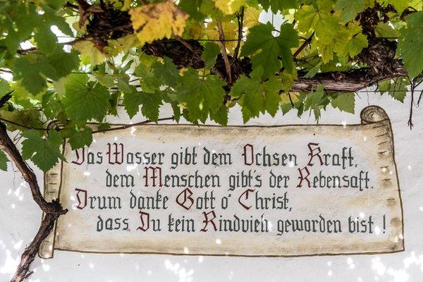 Foto di alcuni dettagli Gasthof Zu Tschötsch