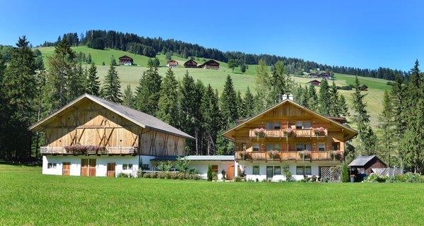 Foto esterno in estate Roderhof