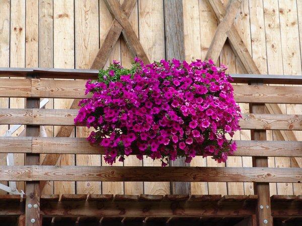 Foto del balcone Roderhof