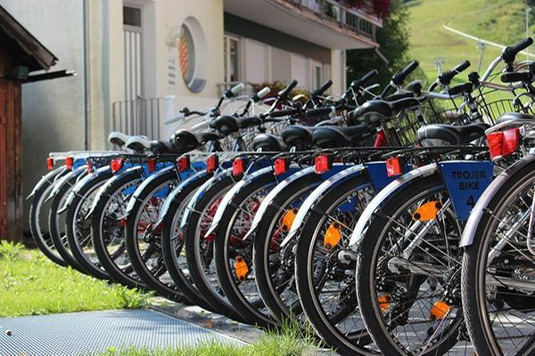 Foto estiva di presentazione Martin Trojer - Noleggio bici