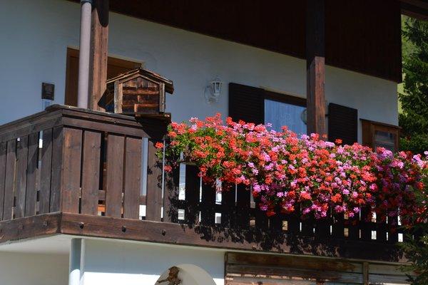 Foto esterno in estate Tlisüra