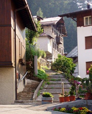 Photo exteriors in summer Zoldana