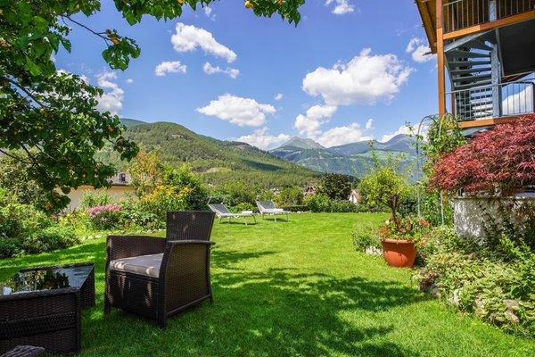 Foto del giardino Sciaves
