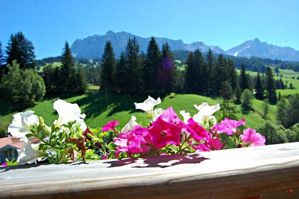 Foto di alcuni dettagli Chalet Alla Cascata