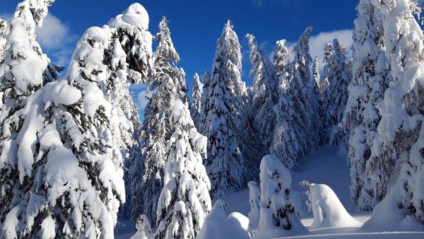 Photo gallery San Cassiano winter