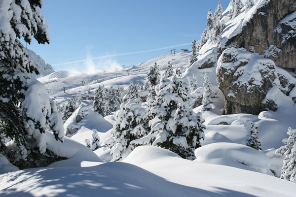 Top Ski School Val Gardena TradItDeEn [it=Selva Gardena, de=Wolkenstein, en=Selva Gardena / Wolkenstein]