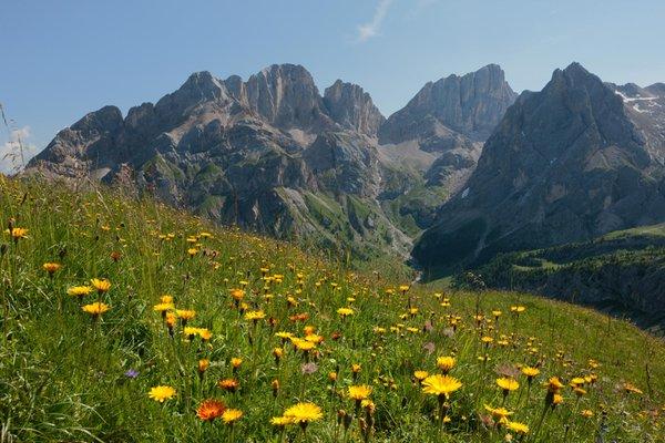 Foto estiva di presentazione APT Val di Fassa - Azienda di promozione turistica