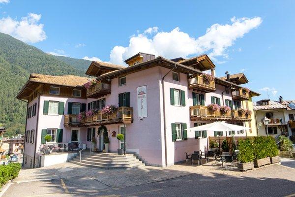 Summer presentation photo Alphotel Dolomiti - Hotel 3 stars